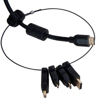 Prokord HDMI-Adapterring DisplayPort DisplayPort Mini HDMI Micro HDMI Mini Han HDMI Hun Sort