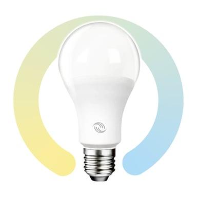 Prokord Smart Home Bulb E27 10W null