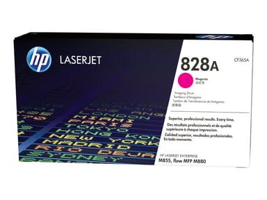 HP Drum Magenta 826A 30K - M880Z+/M855