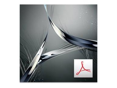 Adobe Acrobat Standard DC for teams 1 år Teamlicensabonnemang - nytt