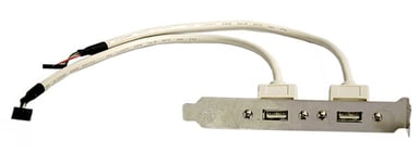 Deltaco USB paneeli 5 pin USB 2.0 header Naaras 4 nastan USB- A Naaras