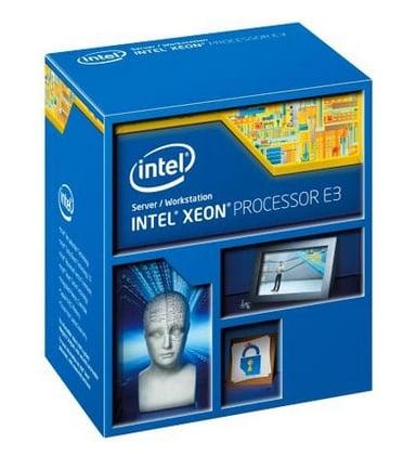 Intel Xeon E5-2630V2 / 2.6 GHz prosessor