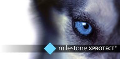 Milestone XProtect Pro+ Base License