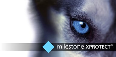 Milestone XProtect Pro+ Basislicens
