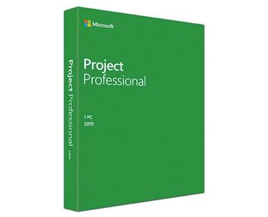 Microsoft Project Professional 2019 Win Dan Medialess