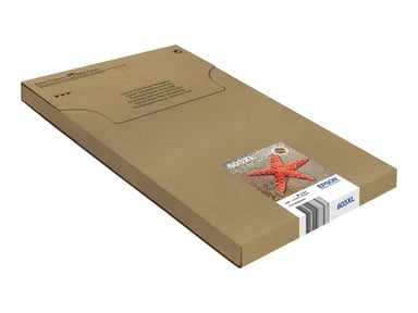 Epson Bläck Multipack 4-Color 603Xl Easy Mail Packaging