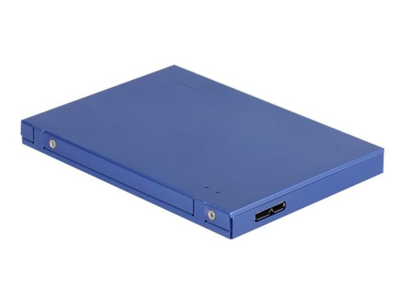 Delock Drevkabinett USB 3.1 (Gen 2) Blå