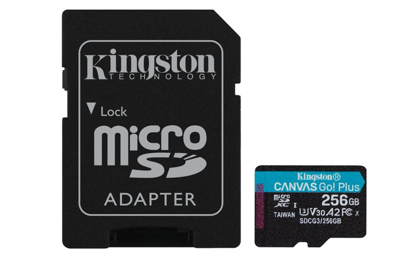 Kingston Canvas Go! Plus 256GB mikroSDXC UHS-I minneskort
