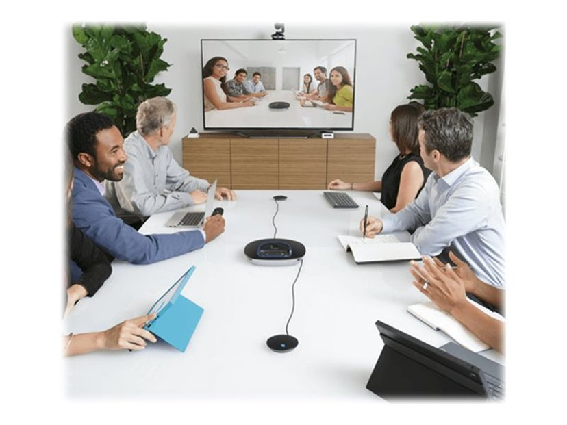 Logitech GROUP Expansion Microphones Only #Demo