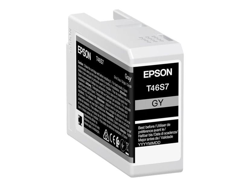 Epson Bläck Grå 25ml - SC P700