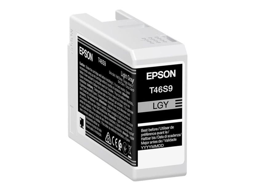 Epson Bläck Ljus Grå 25ml - SC P700