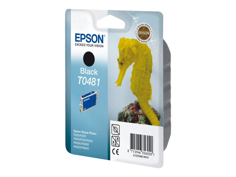 Epson Muste Musta T048 - R300
