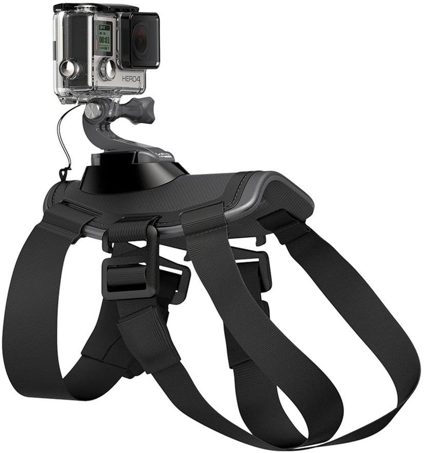 GoPro Fetch - Hundrem
