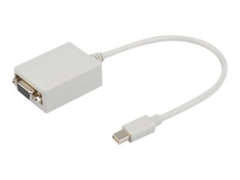Prokord Video adapter DisplayPort Mini Hann VGA Hunn