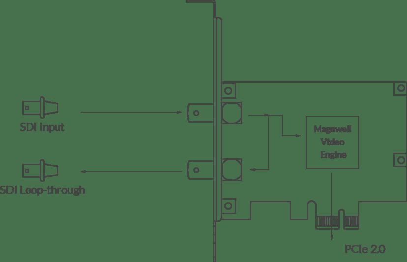 Magewell Pro Capture Sdi 3G/HD Silver