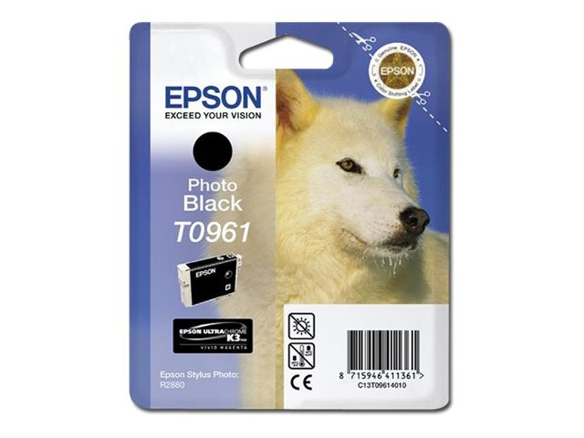 Epson Blekk Foto Svart - STYLUS Foto R2880